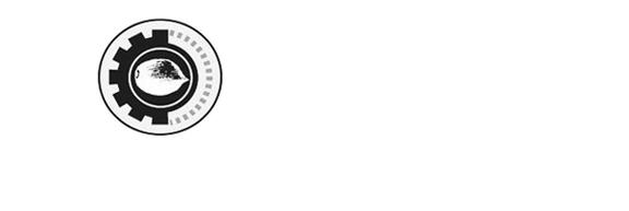 SEED Award Logo