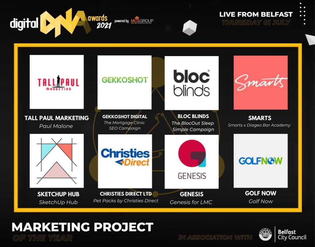 Digital DNA Awards 2021: Freelance NI Copywriter Paul Malone - Tall Paul Marketing - Copywriter Ireland